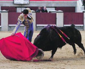 Novillero de Cehegín Antonio Puerta