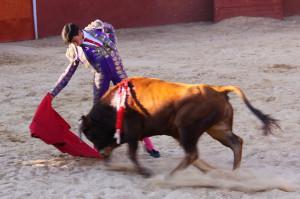 Foto de archivo :::Novillero de Calasparra Filiberto Martinez:::