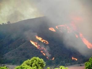 Foto archivo ::Incendio norte Moratalla::
