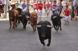21848_10th-to-17th-july-moratalla-encierros-and-fiestas-of-cristo-del-rayo_3_large